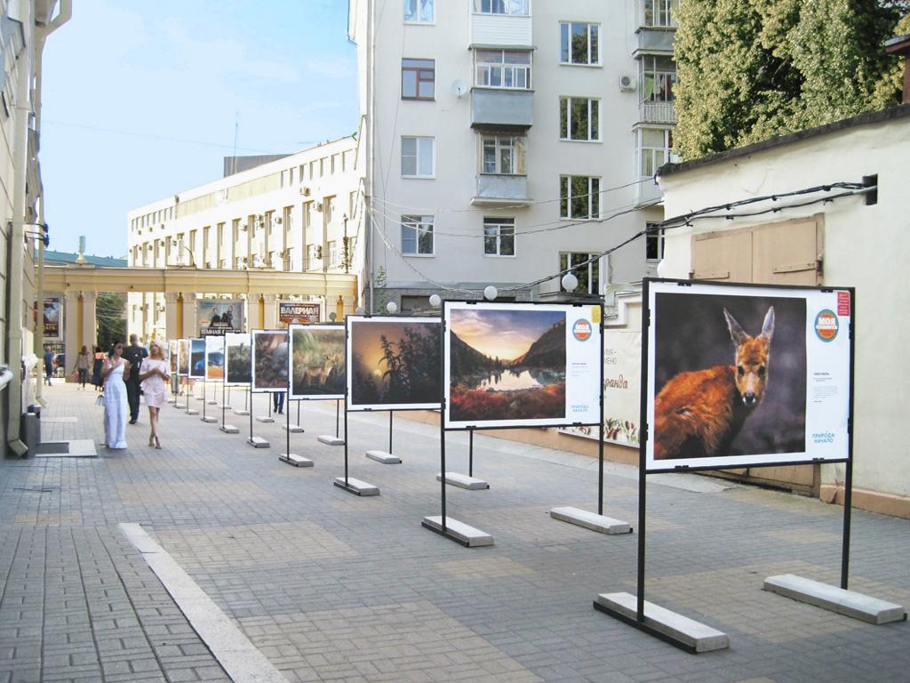 Стенды для фотовыставки «Природа: Начало»
